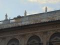 La Cattedrale di san Lorenzo - 16