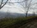 Vista panoramica dal Santuario di Nostra Signora della Guardia n.8