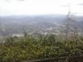 Vista panoramica dal Santuario di Nostra Signora della Guardia n.9