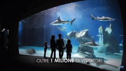 Acquario di genova - Oltre 1 milione di visitatori